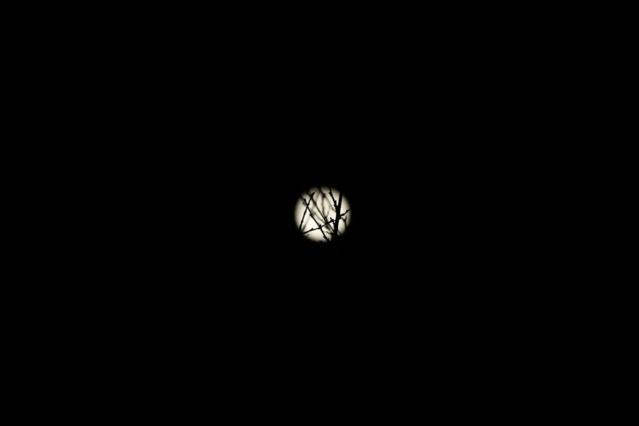 'Süper ay'dan muhteşem kareler