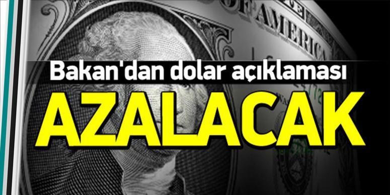 Bakan'dan dolar açıklaması