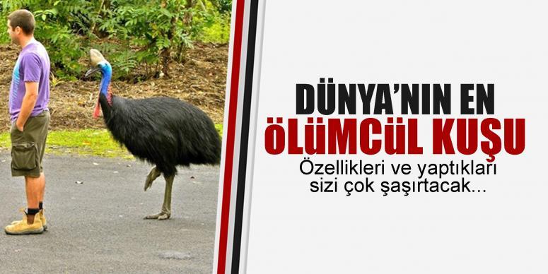 Dünya'nın en ölümcül kuşu!