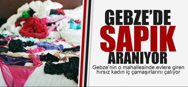 Gebze'de kadın çamaşırı çalan sapık aranıyor