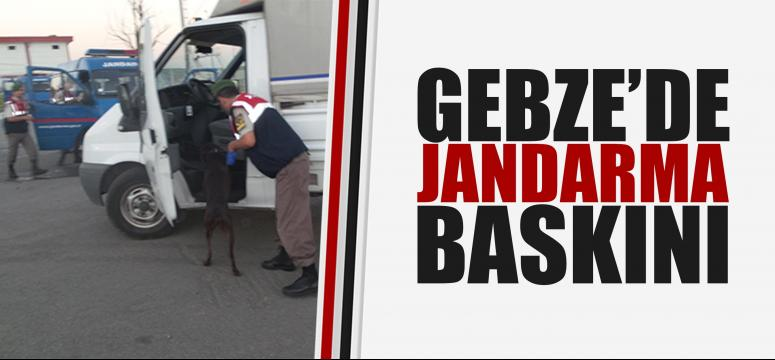 Gebze'de jandarma baskını!