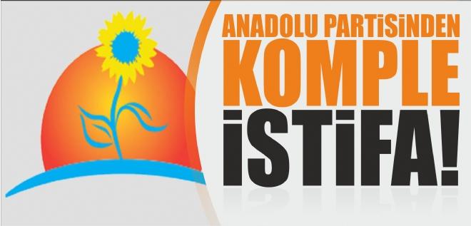 Anadolu Partisi'nde komple istifa