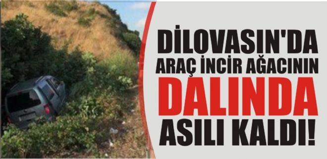 DİLOVASIN'DA ARAÇ İNCİR AĞACININ DALINDA ASILI KALDI