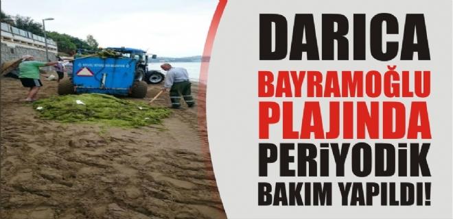 Darıca Bayramoğlu Plajı'nda periyodik temizlik