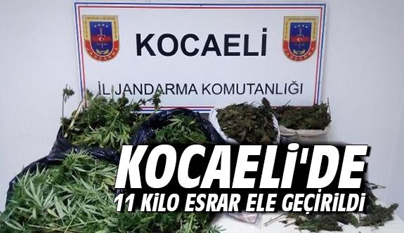 Kocaeli'de 11 kilo esrar ele geçirildi
