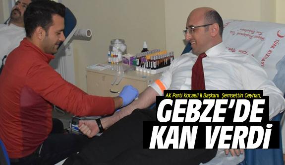 Ceyhan, Gebze'de kan verdi!