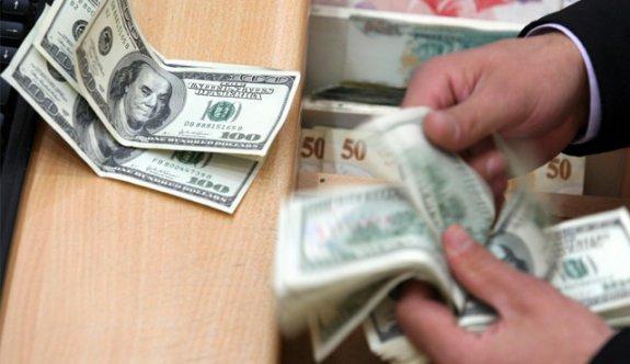 Dolar 3.1742'nin üzerini görerek rekor yeniledi