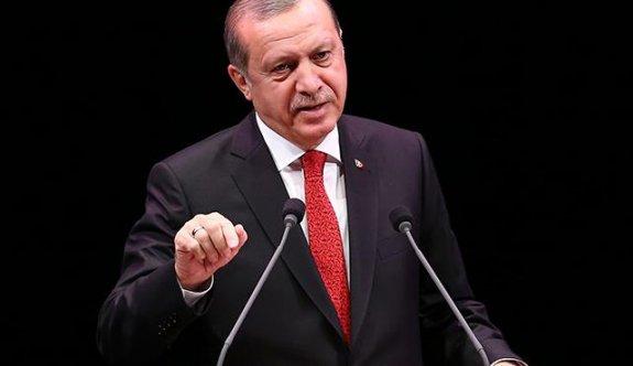 Erdoğan AB referandumu için tarih verdi