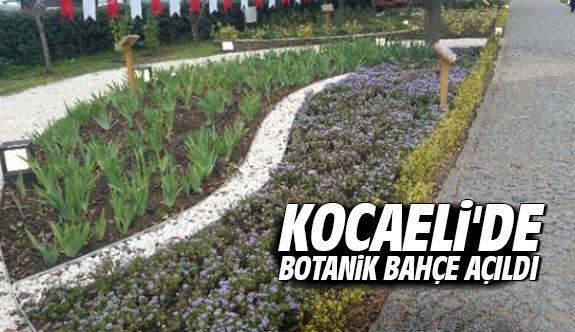 Kocaeli'de Botanik Bahçe Açıldı