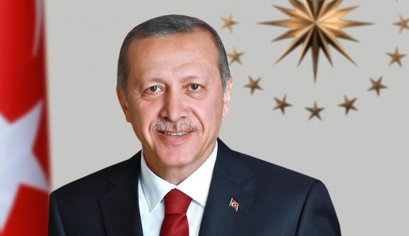 Başbakan, Erdoğan'ın yetkilerini anlattı