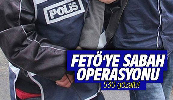 FETÖ'ye sabah operasyonu: 530 Gözaltı!
