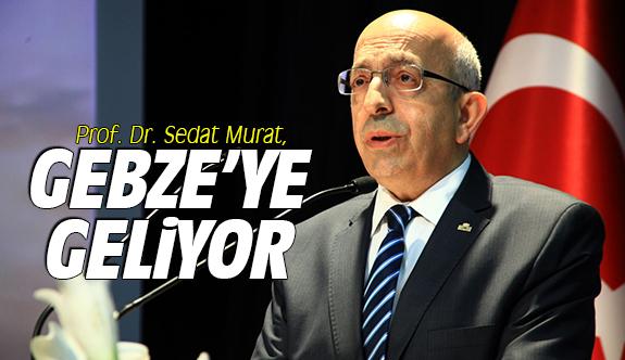 Sedat Murat, Gebze'ye geliyor
