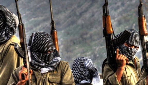 Almanya'dan PKK itirafı!