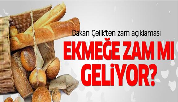 Bakan Çelik'ten 'ekmeğe zam' açıklaması