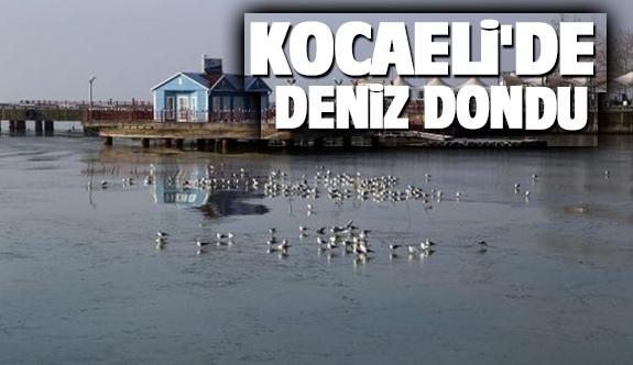 Kocaeli'de deniz dondu