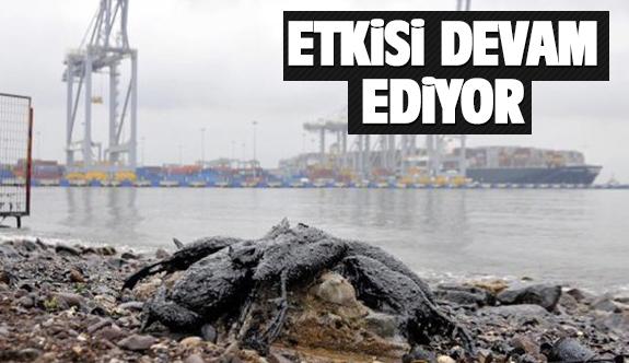 Körfez'de ki kirlilik devam ediyor!