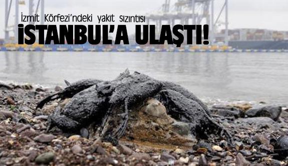 Körfez'dekiyakıtsızıntısıİstanbul'aulaştı!