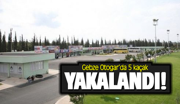 Gebze Otogar'da 5 kaçak Afkan yakalandı!