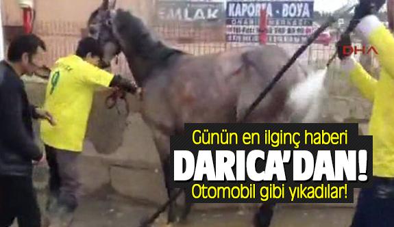 Günün en ilginç haberi Darıca'dan!