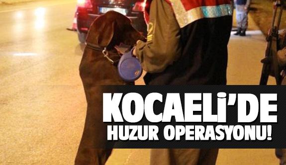 Kocaeli'de huzur operasyonu