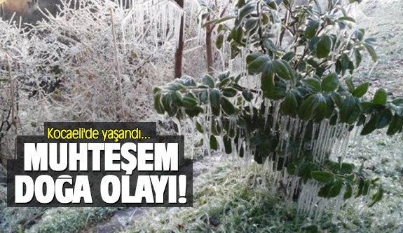 Muhteşem doğa olayı Kocaeli'de yaşandı!