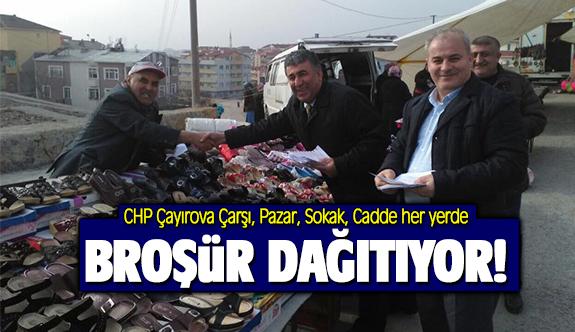 CHP Çayırova 'broşür' dağıtıyor!