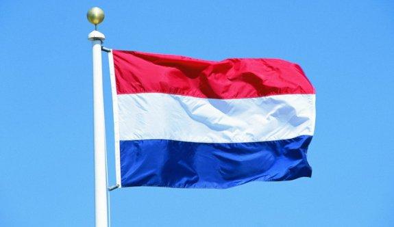 Hollanda: Yanlış bir adım attık