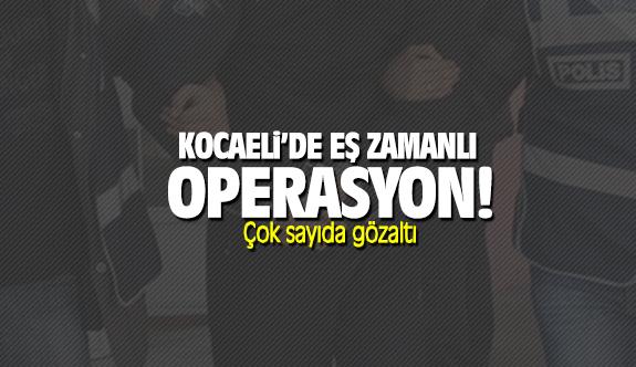 Kocaeli'de eş zamanlı operasyon: Çok sayıda gözaltı
