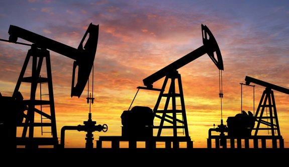 Türkiye petrol için harekete geçti