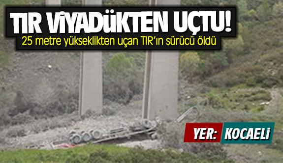 Kocaeli'de TIR viyadükten uçtu: Sürücü öldü