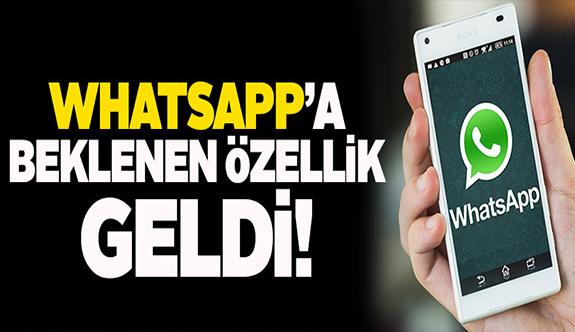 WhatsApp'ta bu özelliği herkes kullanacak