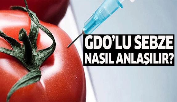 GDO'lu sebze nasıl anlaşılır?