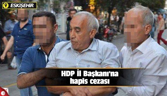 HDP İl Başkanı'na hapis cezası