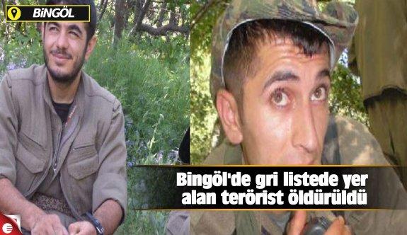 Bingöl'de gri listede yer alan terörist öldürüldü