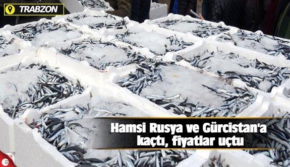 Hamsi Rusya ve Gürcistan'a kaçtı, fiyatlar uçtu