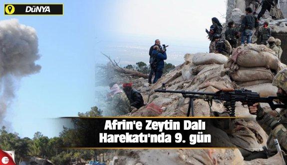 Afrin'e Zeytin Dalı Harekatı'nda 9. gün