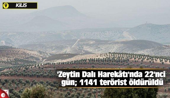 'Zeytin Dalı Harekâtı'nda 22'nci gün; 1141 terörist öldürüldü