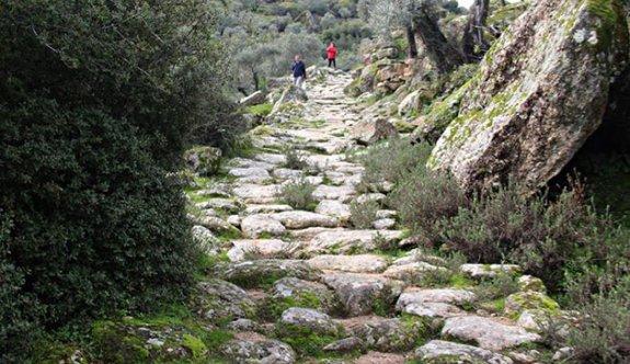 Zeytinliklere yol açmak için antik yolu tahrip ettiler