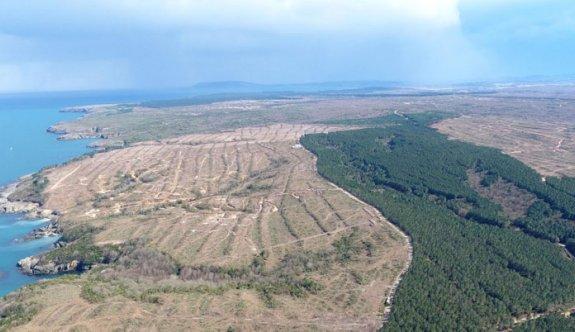 Sinop'ta nükleer santral için 1415 futbol sahası büyüklüğünde alan tahsis edildi