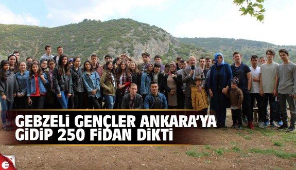 Gebzeli gençler Ankara'da 250 fidan dikti
