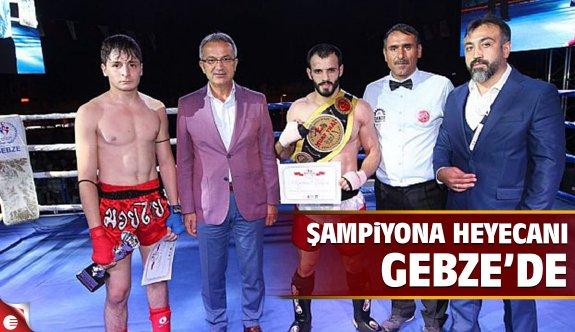 Şampiyona heyecanı Gebze'de başladı