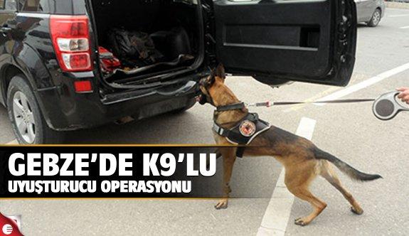 Gebze'de K9lu uyuşturucu operasyonu!