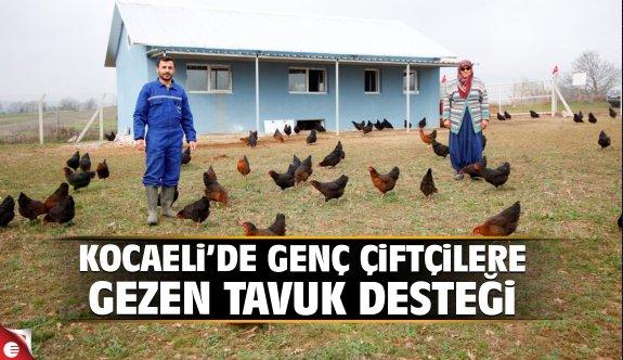 Kocaeli'de genç çiftçilere gezen tavuk desteği