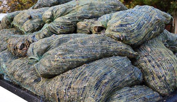 Çanakkale'de tonlarca ele geçirildi