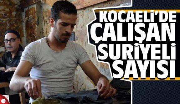 Kocaeli'de çalışan Suriyeli sayısı
