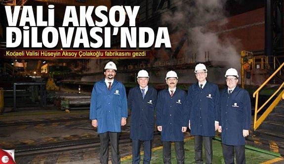 Vali Aksoy, Çolakoğlu'nu gezdi