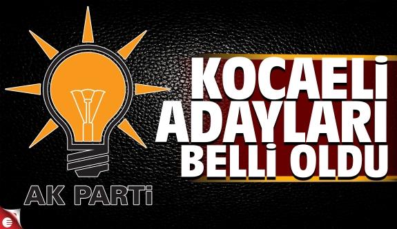 AK Parti Kocaeli İlçe Belediye Başkan Adayları belli oldu 2019