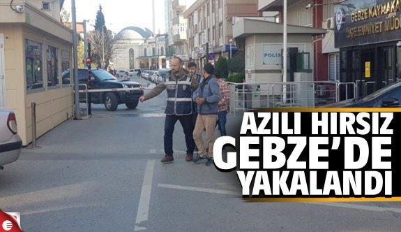 Azılı hırsız Gebze'de yakalandı