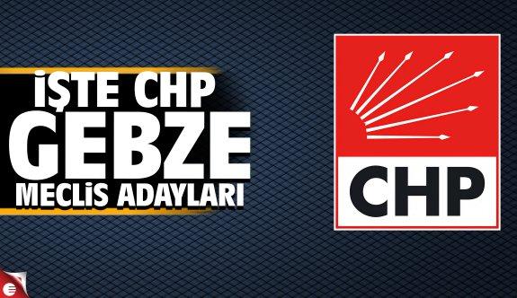 CHP Gebze meclis üyesi adayları belli oldu 2019