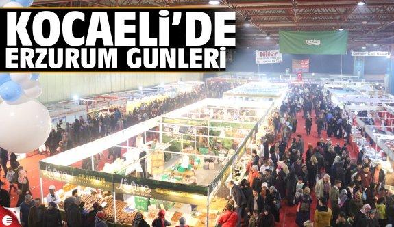 Erzurum, Kocaeli'ye taşındı